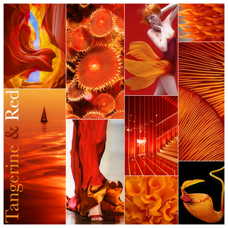 ColorStory_Tangerine&Red.png