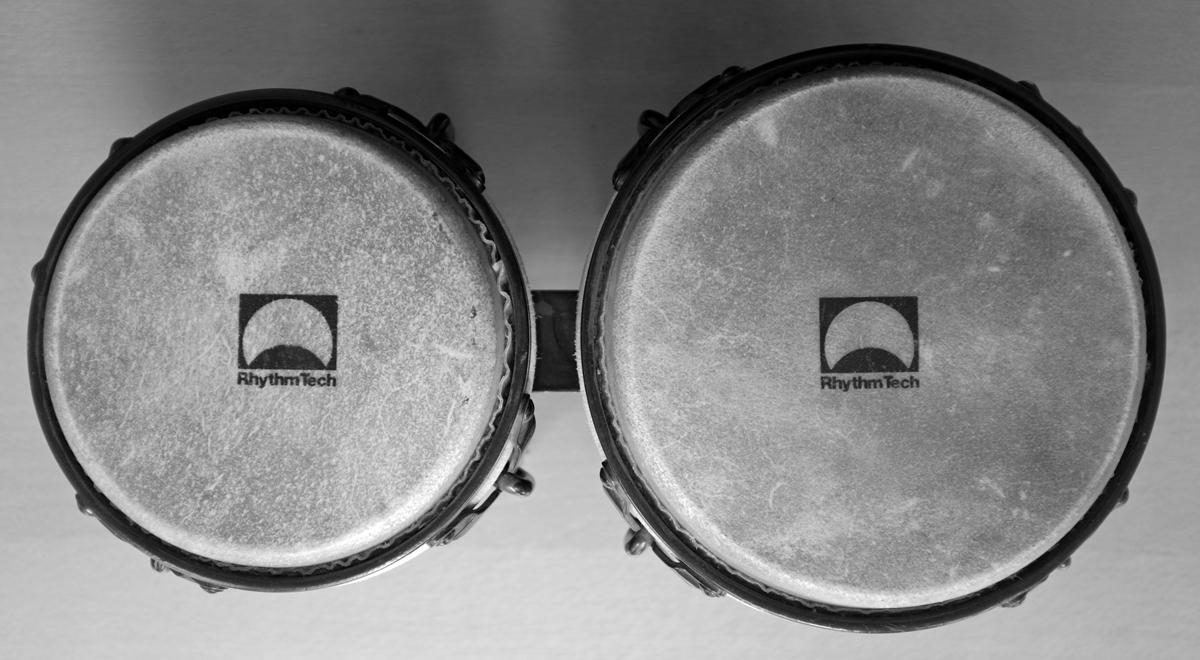 bongo-top-downBW.jpg