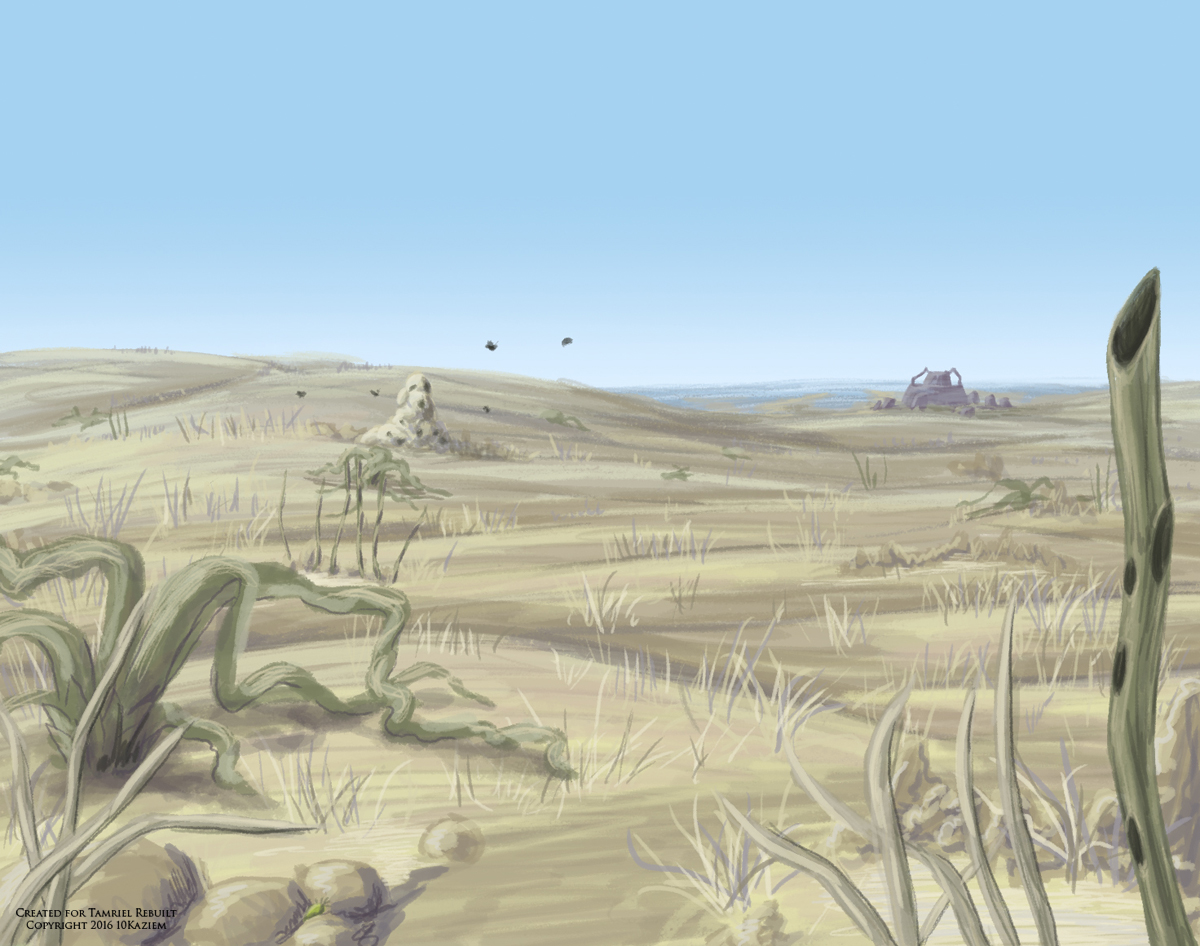 Dry spindlewort in the eastern desert. View faces towards the eastern mud coast and tidal flats. Digital sketch, 2016.