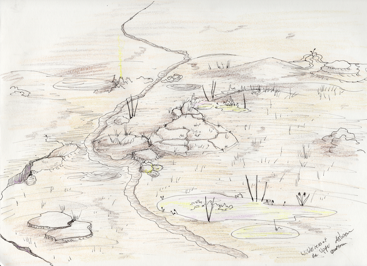 Spindlewort growing alongside typical surface features like salt stains and erosion channels in the central part of the desert. Sketch, art pen and colored pencil, 2016.