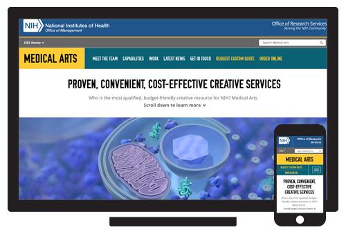 NIH Medical Arts  //  Agency: Smart Solutions