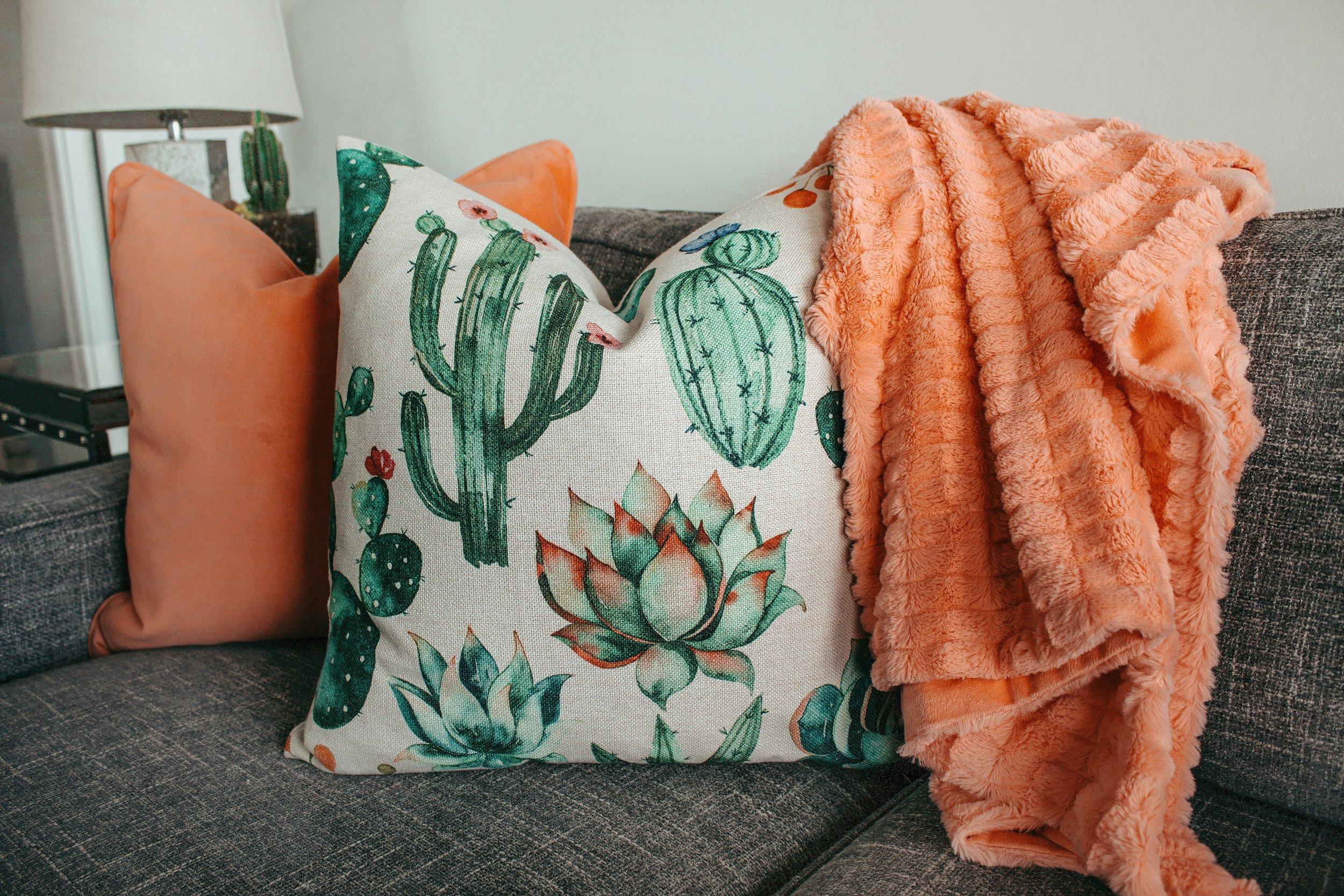 cactus-cactus-plant-color-1239298.jpg