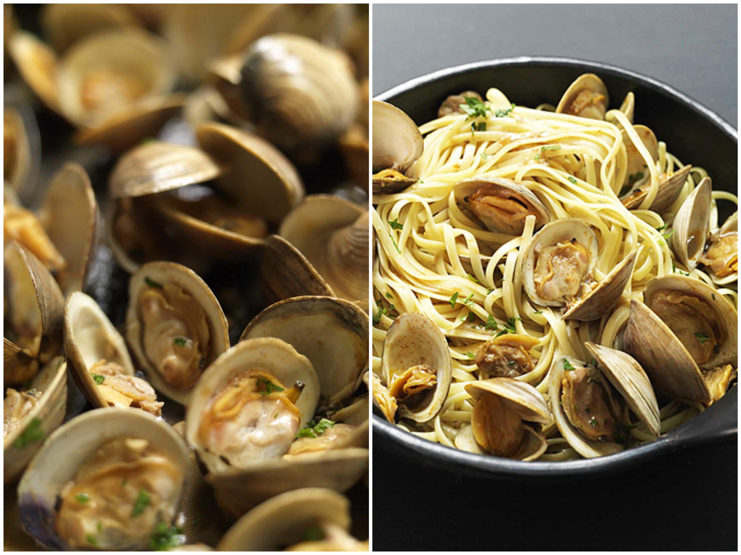 DOF2 pub clams3 Collage.jpg