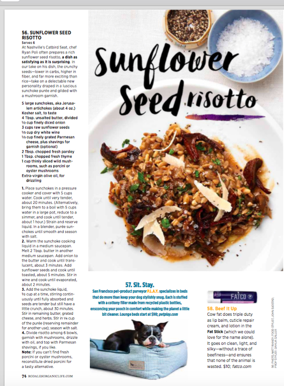 Sunflower Seed Risotto.jpg