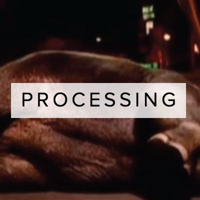 PROCESSING_THUMBS.jpg