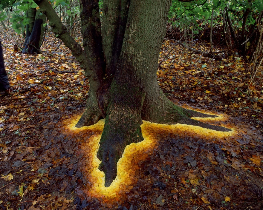 artist blog featuring environmental art inspiration