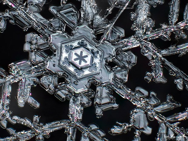 snowflake geometry close ups