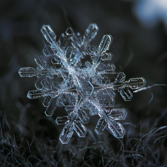 close up snowflake shots