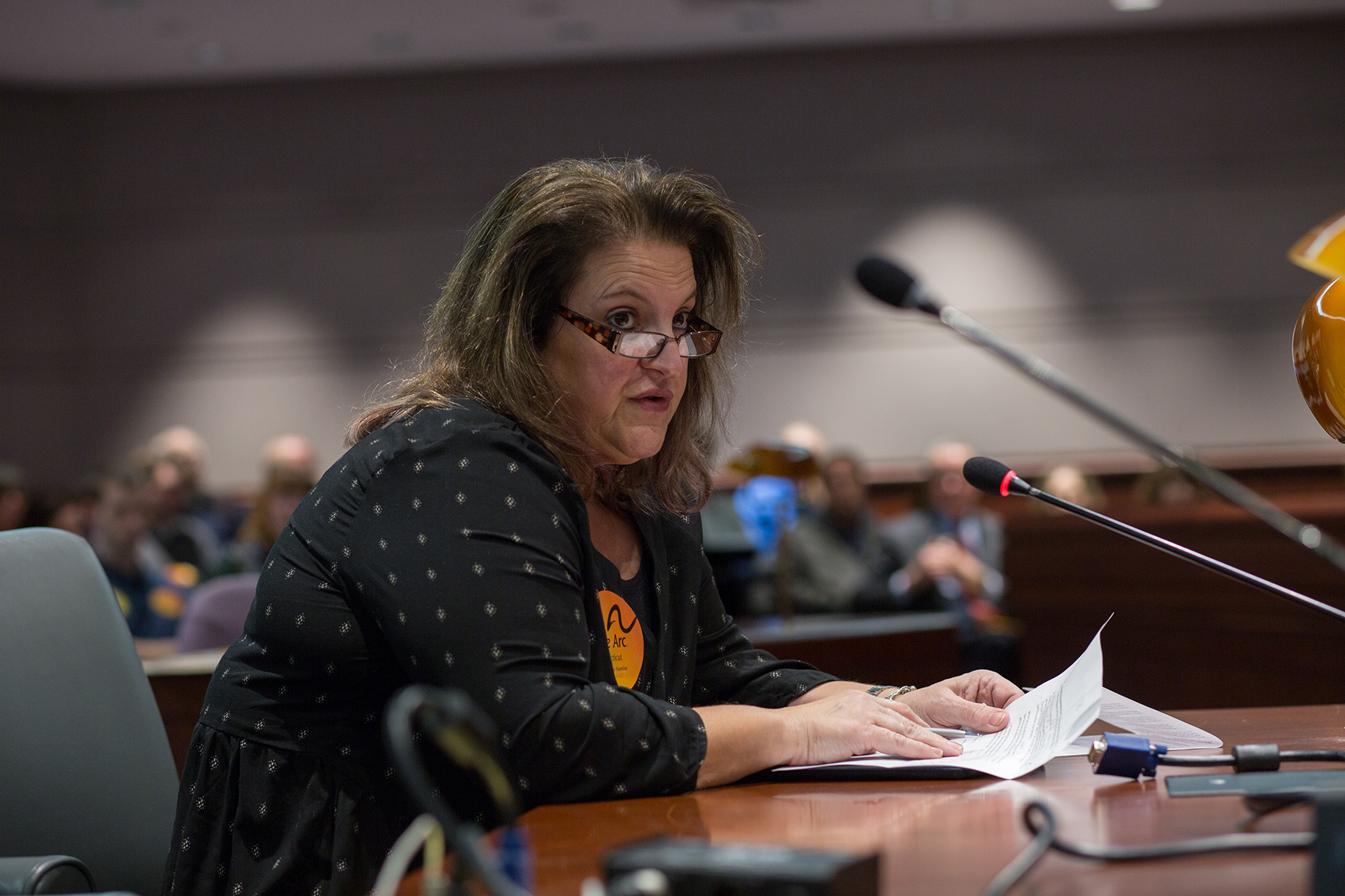 2.7.17 4th Annual Arc CT Family Hearing Day-98.JPG
