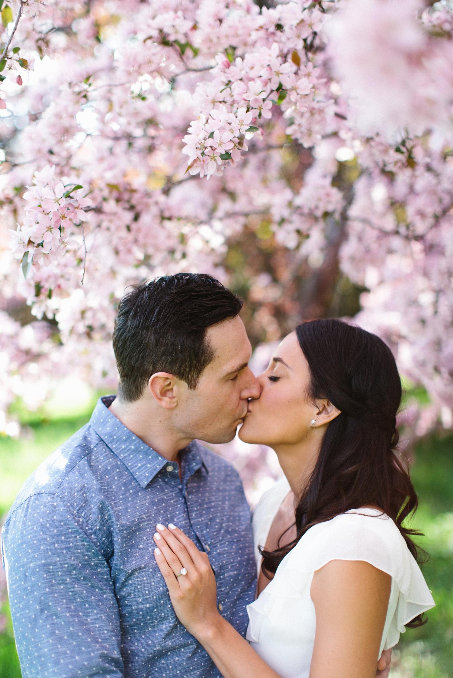 Ottawa Engagement Session Apple Blossoms 3.jpg
