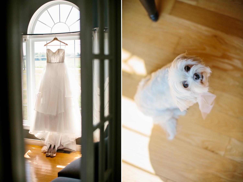 Ottawa Wedding Photography Prince Edward County Wedding Photography  4.jpg