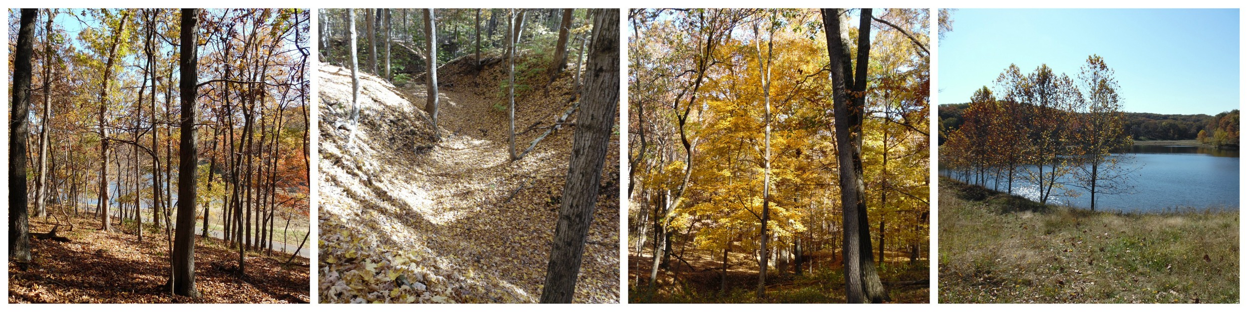 It's a beautiful time of year for hiking!