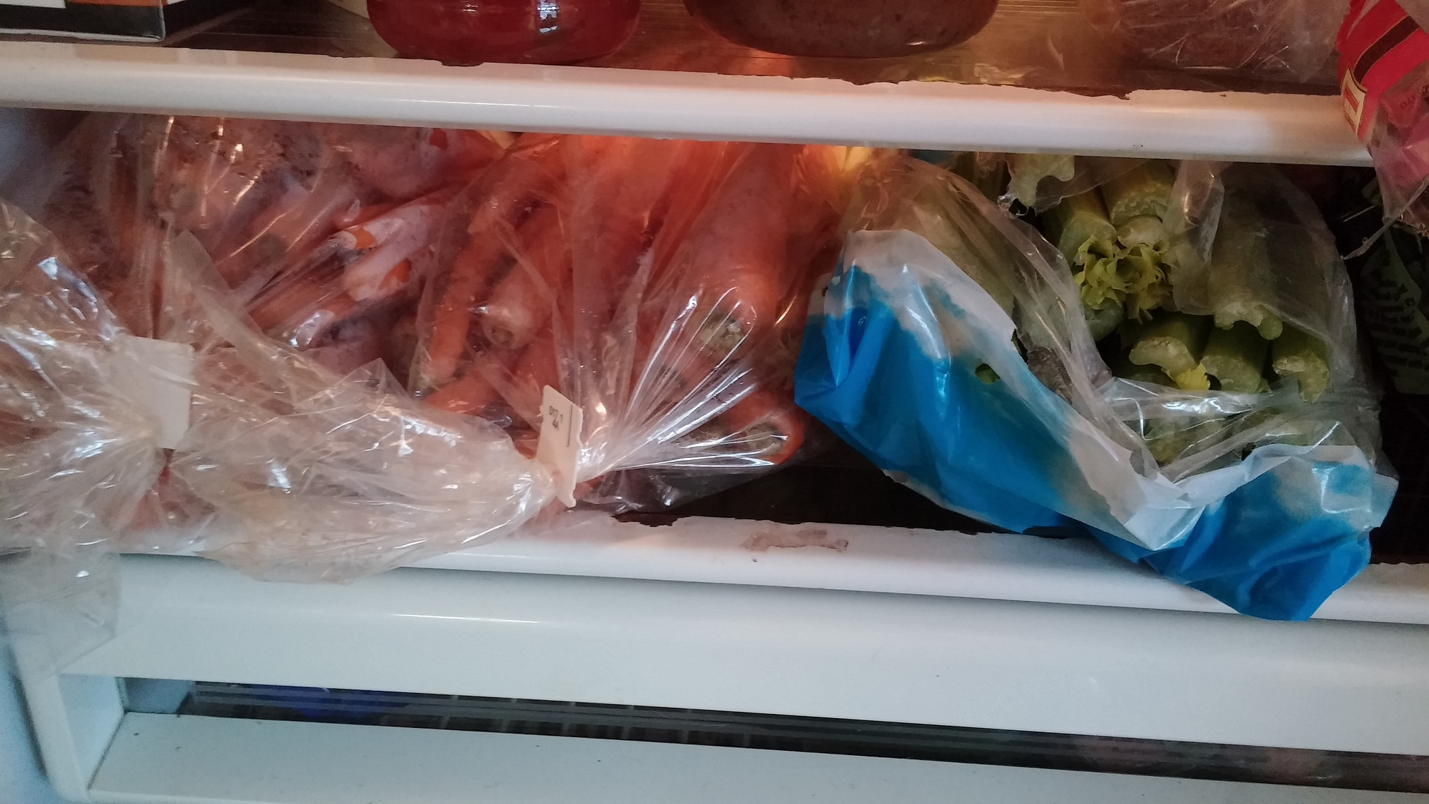 It's not easy to get 10 pounds of carrots and three celery hearts into the fridge, but I did it.