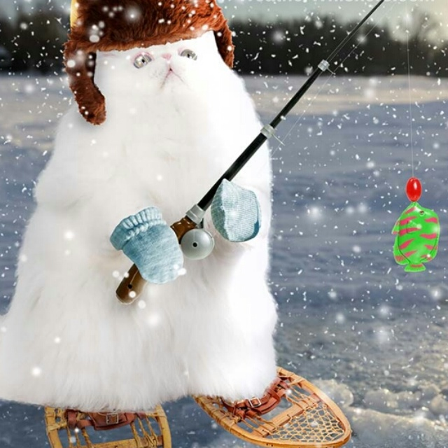 One of the cute images Weather Whiskers has for snow