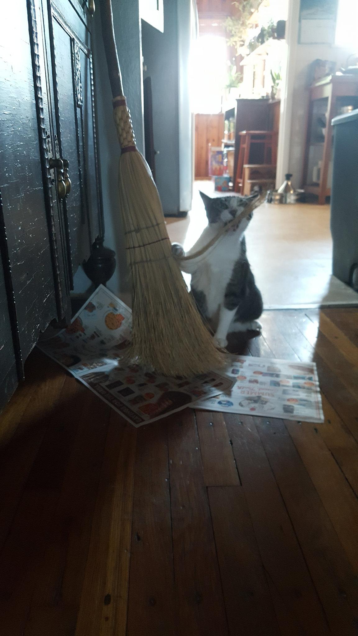 Fuck this broom