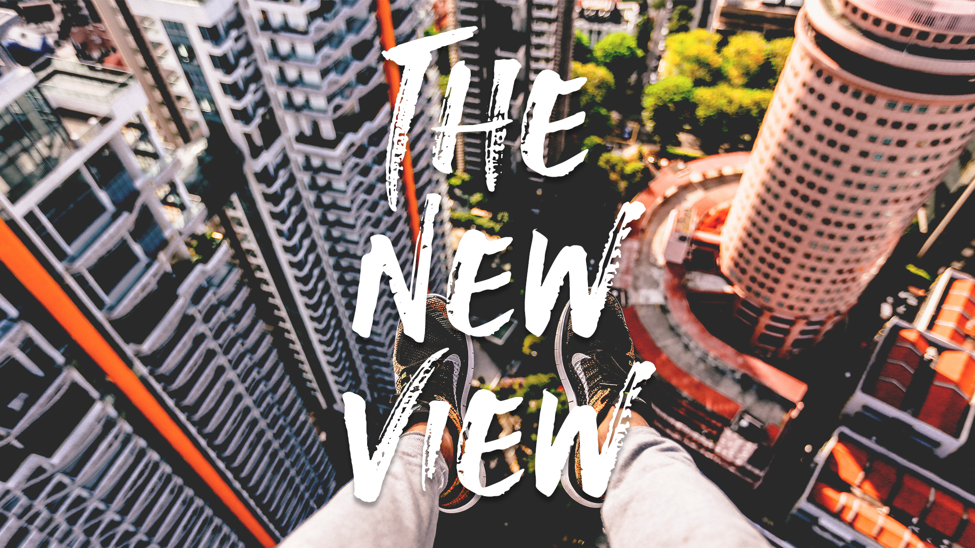 The New View - Title.jpg
