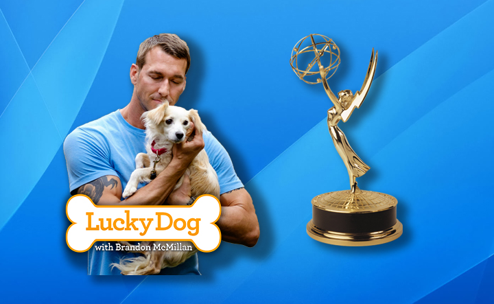 """Lucky Dog""  with Brandon McMillan has been nominated for a Daytime Emmy® Award!"