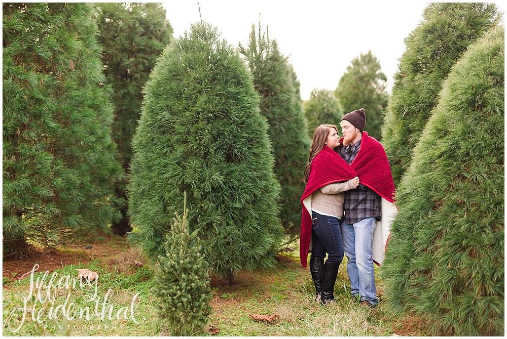 Christmas tree farm portraits richmond va_0008.jpg