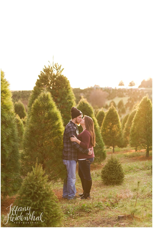 Christmas tree farm portraits richmond va_0018.jpg