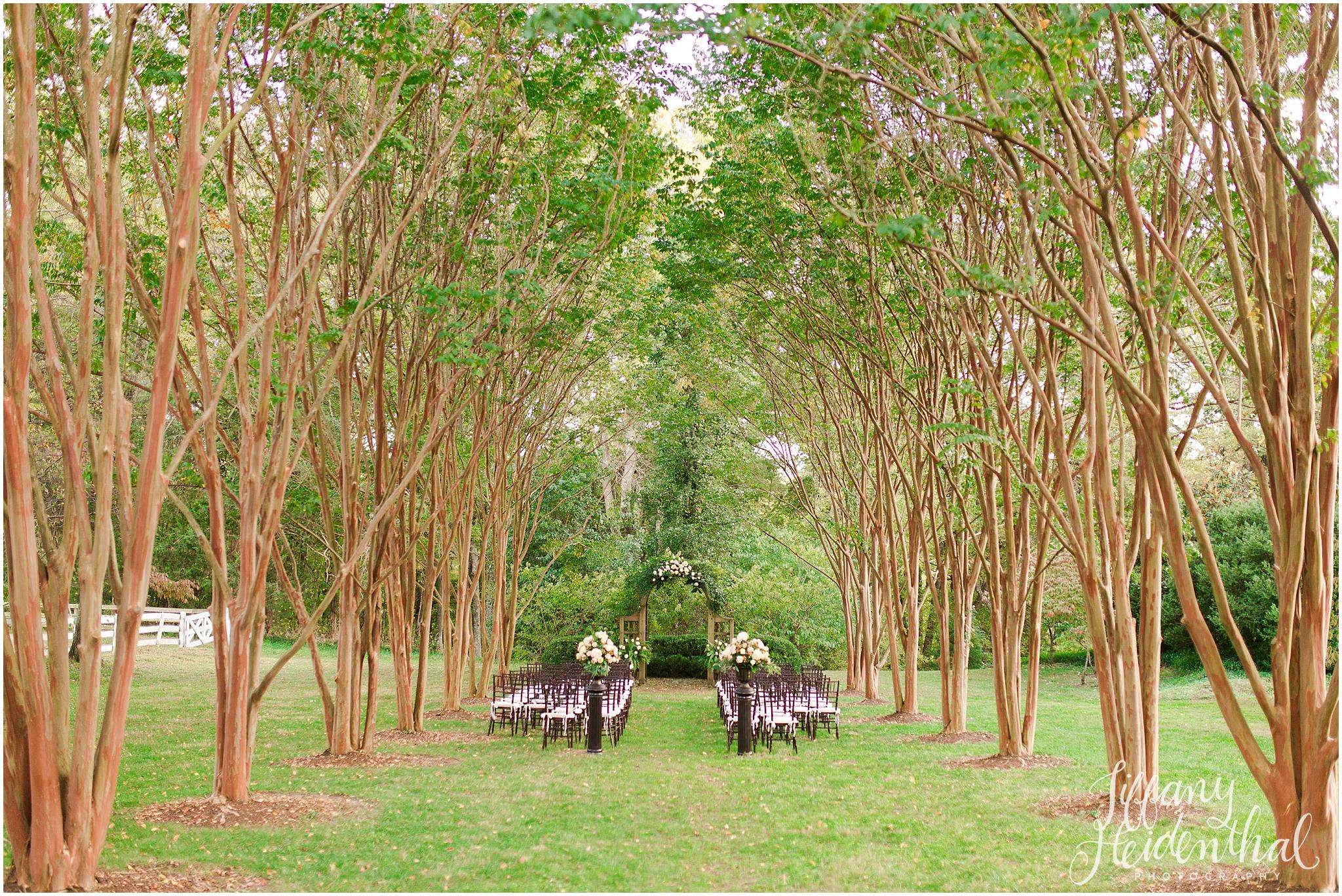 Richmond Wedding Photographer_0034.jpg