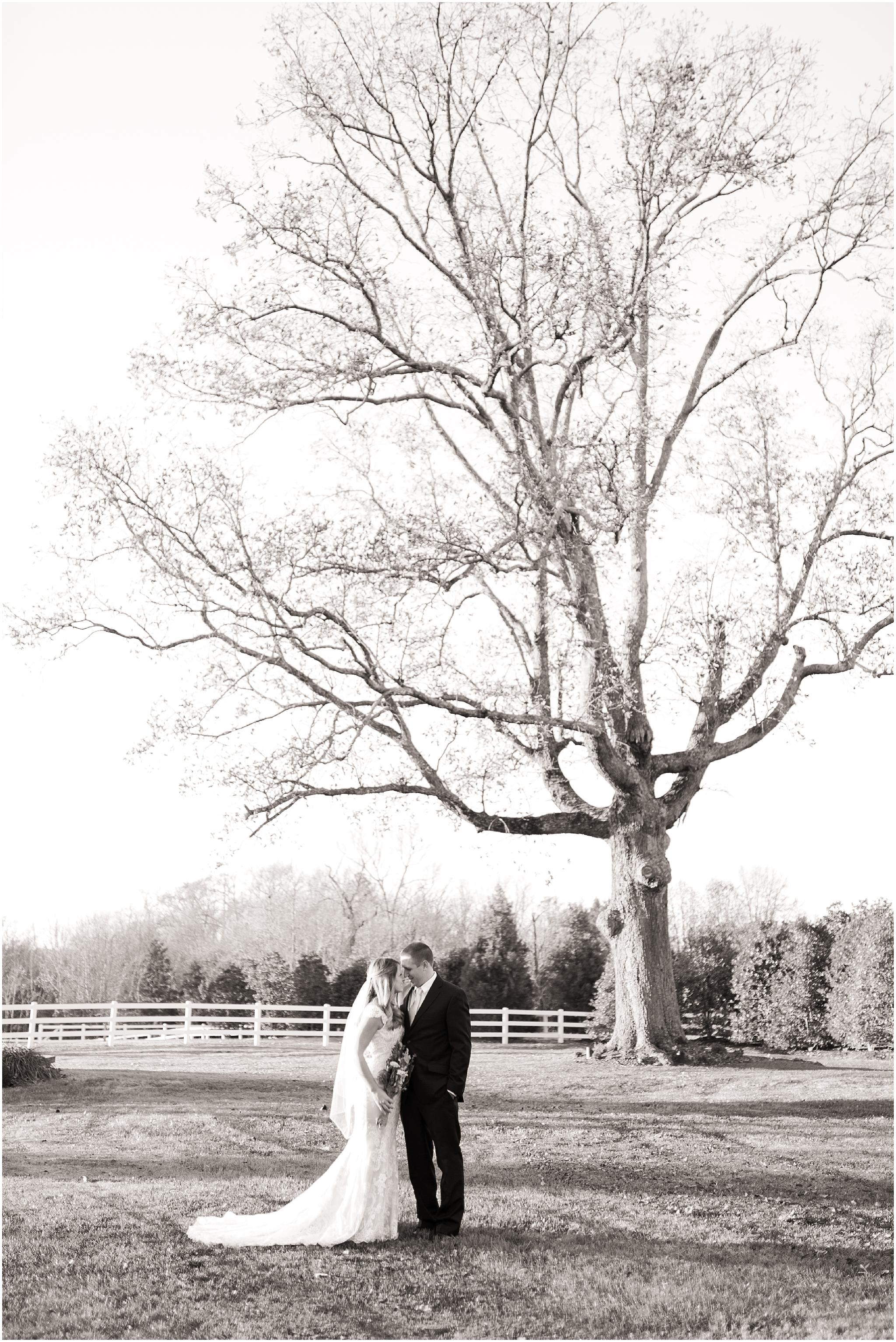 Amber Grove Wedding Photographer (2).jpg