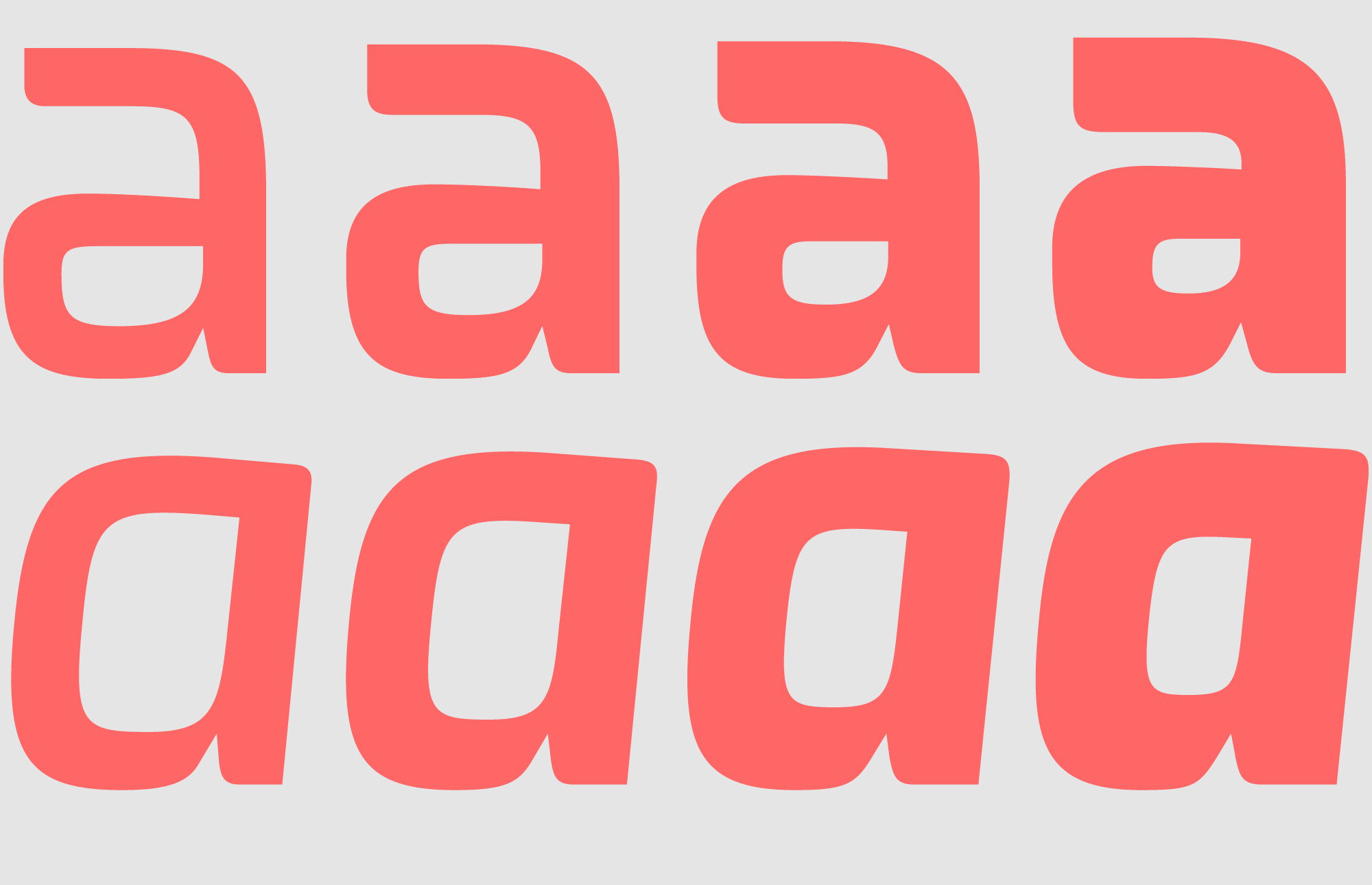 The whole family includes four weights on roman and italic styles.