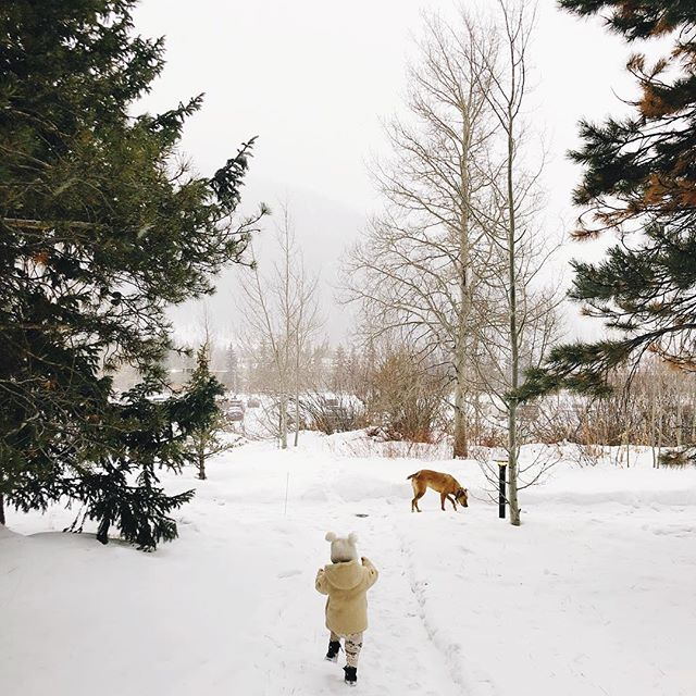 walkin' in a winter wonderland 🎶 #theluandtheroo