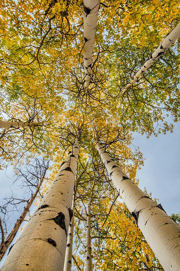 rocky mountains, landscapes, clouds, fall, autumn, estes park, landscape photographer, Jeffrey Nelson