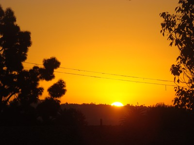 """Sunrise bursts forth from the horizon over Los Angeles from Mar Vista.   Often, we try to run away from feeling. And, as we avoid feeling—in a kind of """"spiritual bypass""""—we cannot plunge into oceanic Oneness. We get stuck between the surface and the deep and can't touch the Divine Depths. What we really need to do is to feel so deeply that we reach the Universal. To know the wholeness that is beneath our experience of brokenness. To see the pearl caressing the grain of sand. …Jane Bolton"""