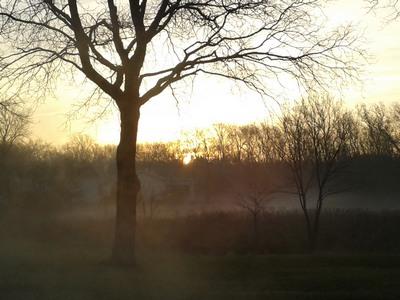 Sunrise in a mist in Hoffman Estates, Illinois   I don't say we all ought to misbehave, but we ought to look as if we could.                  ….Orson Welles