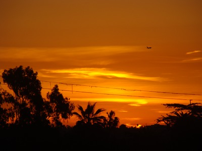 Sunrise presses through at the the horizon as a jet lands on this gorgeous dayat LAX.   Writing is a socially acceptable form of schizophrenia. … E.L. Doctorow