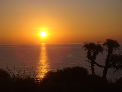 "Sunrise in paradise....Point Dume in Malibu with its fascinating Coreopsis    I have two sticky notes that sit on either side of my computer. One says, ""Put in the time"" and the other says, ""Start now.""     …Stephen Gaghan"