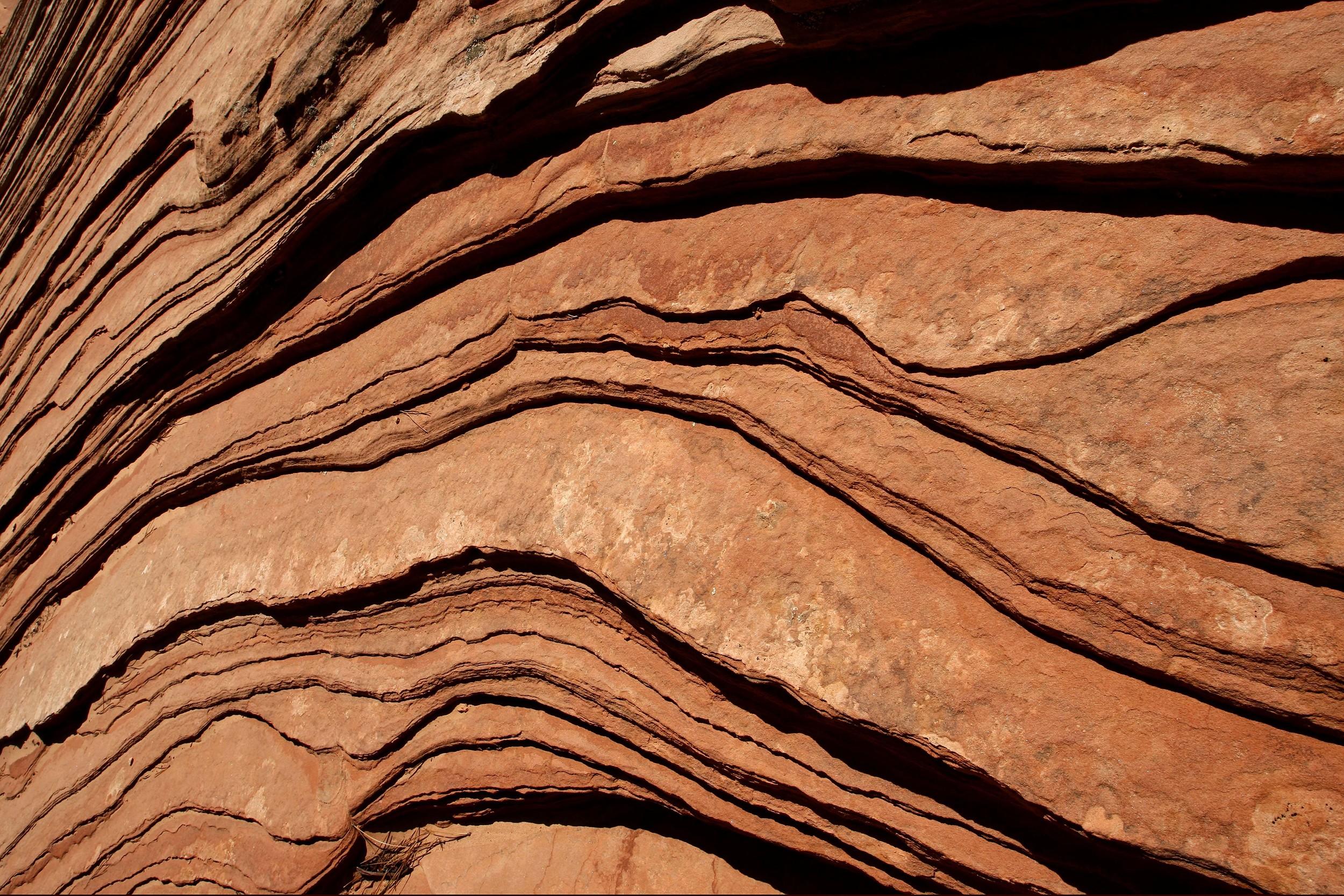 Rock Face - Zion National Park - Utah