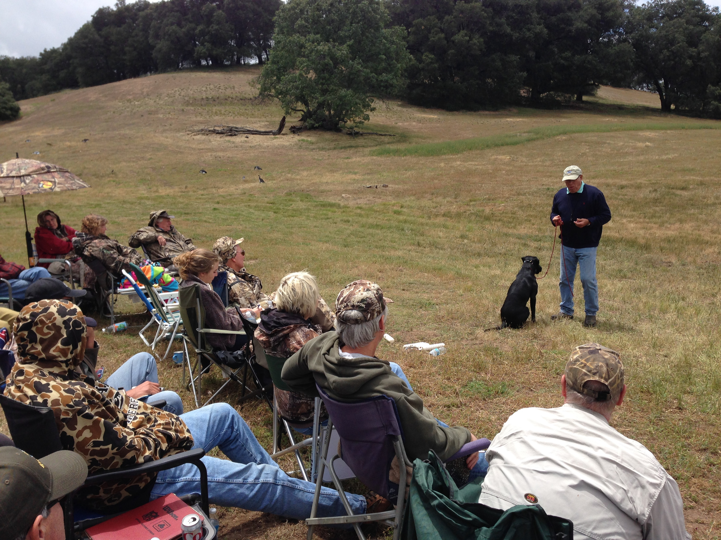 Bill Hillmann talks about his proven methods of positive reinforcement for field dogs.