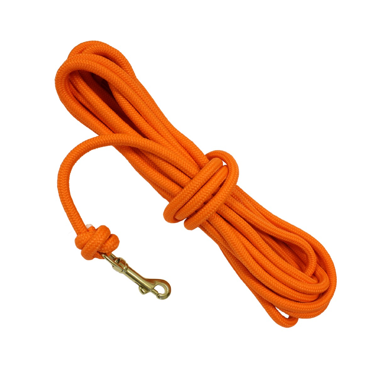 Rope for dog training in obedience.