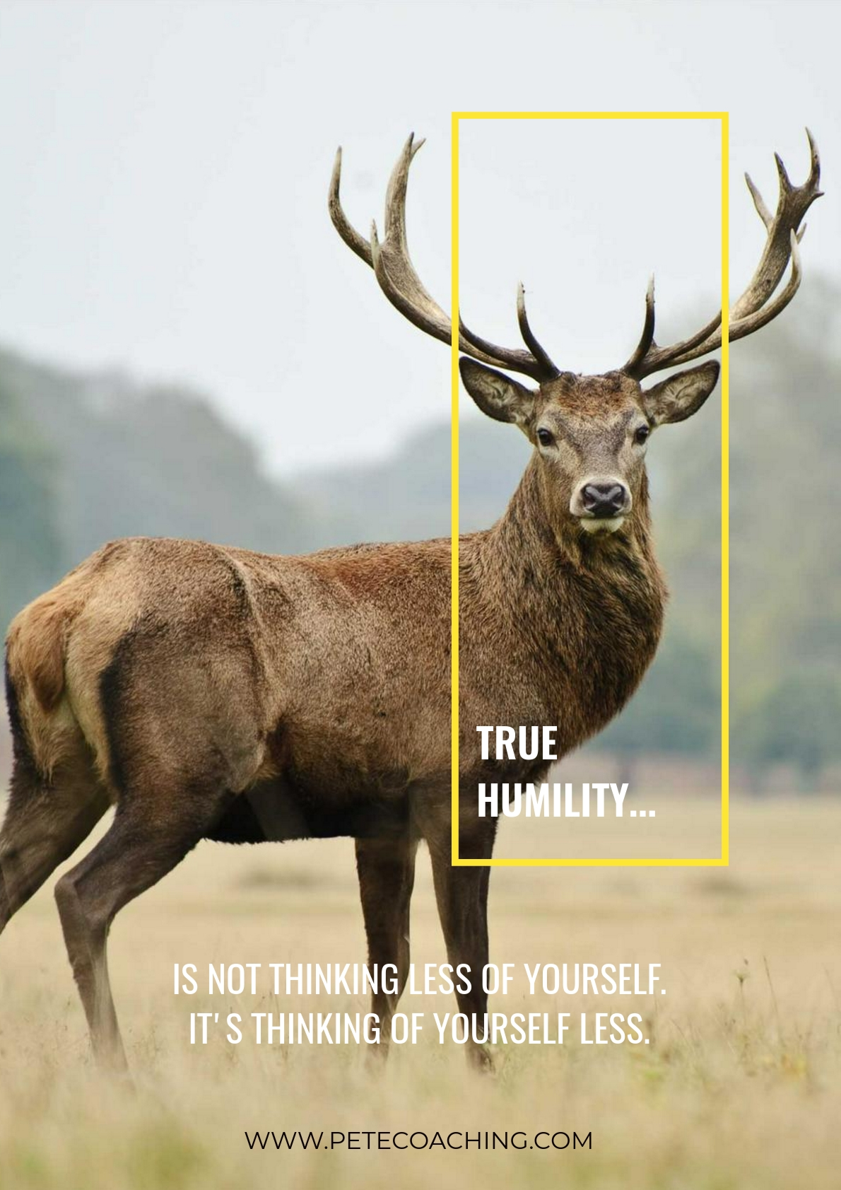 True Humility Poster - Click Here to download PDF
