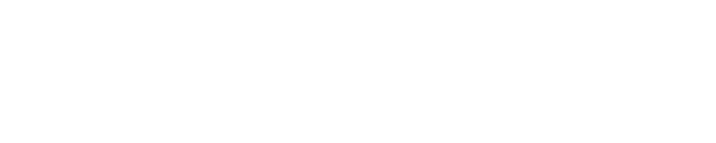 Rich-Faiva-logo.png