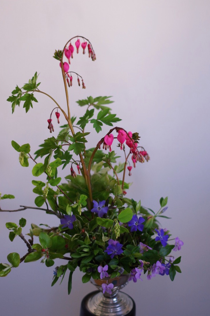 Took this photo as the sun was starting to set which seemed fitting given its dusky base colours- this arrangement features whole violet plants, vinca, forget me nots, apple and saskatoon branches, and the first beautiful stems of bleeding heart.