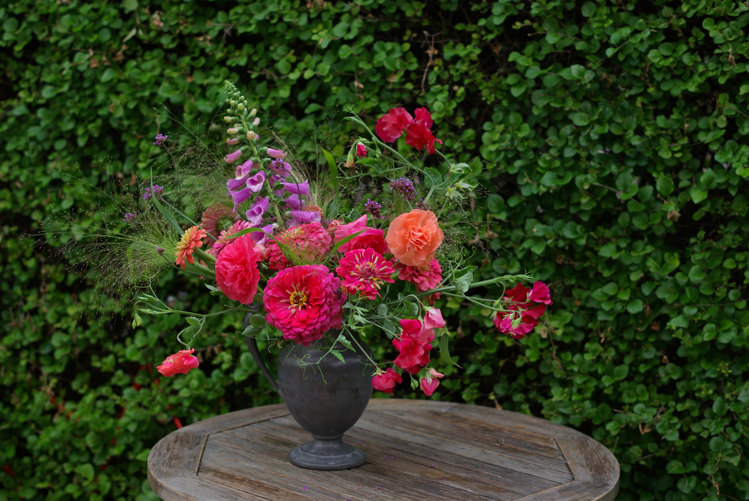 The garden in late July is full of bright zinnias, poppies, sweet peas and foxglove. The grass is my favourite variety, 'Frosted Explosion,' which is easy to grow from seed.