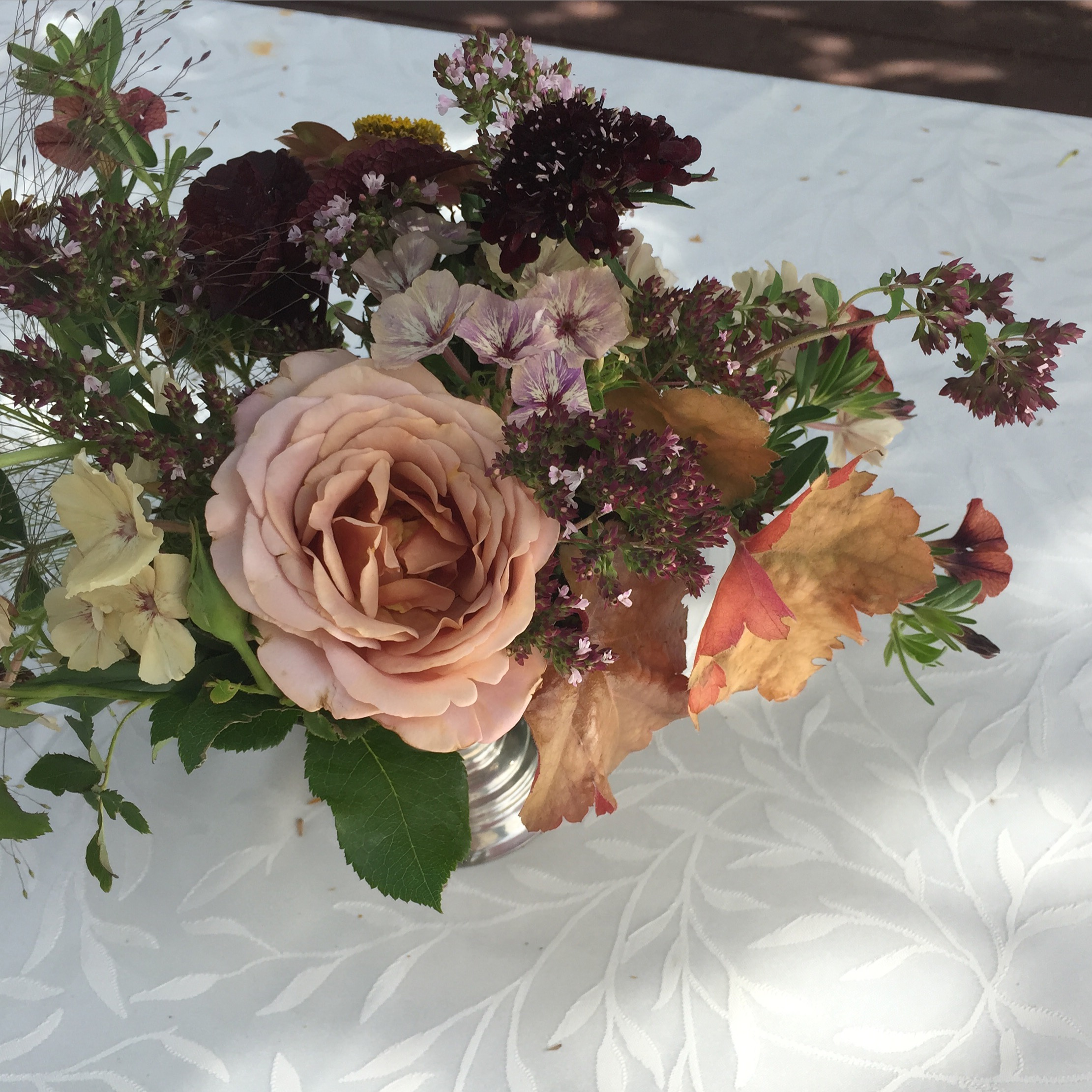 The first of the roses, Koko Loko, inspired this gorgeous colour scheme using phlox, heuchera, scabiosa, oregano, Frosted Explosion grass and calibrachoa.