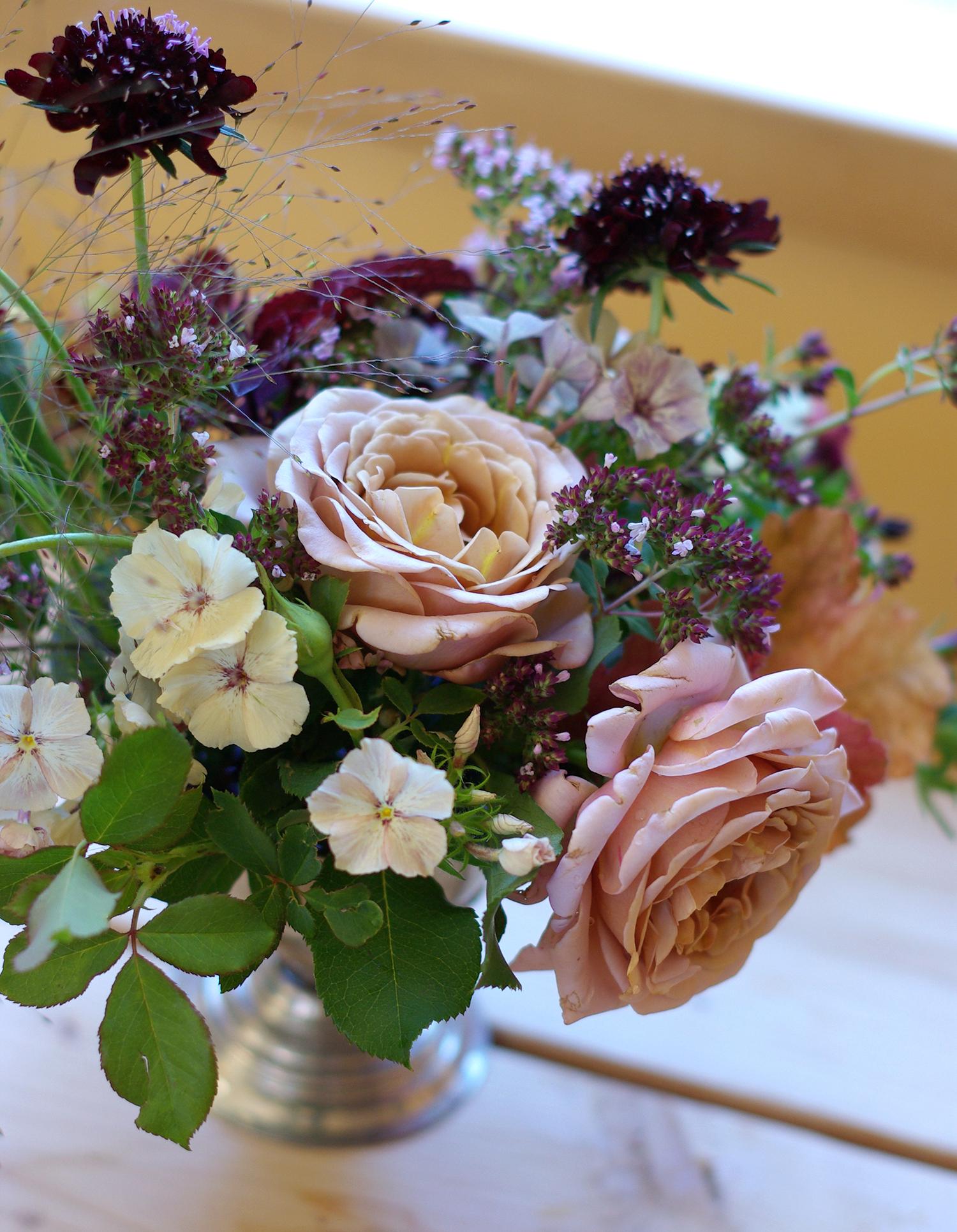 Late July - roses, phlox, oregano, frosted explosion grass, scabiosa, heuchera, coleus