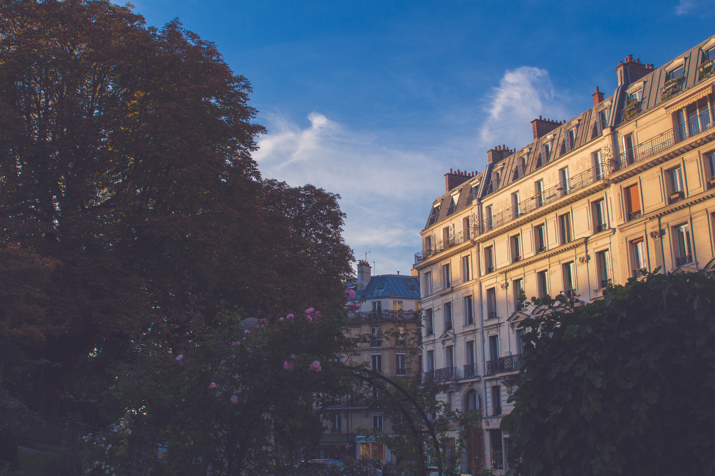 Paris-516.jpg