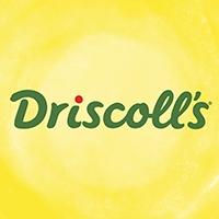 driscoll-s-squarelogo-1472619687052.png