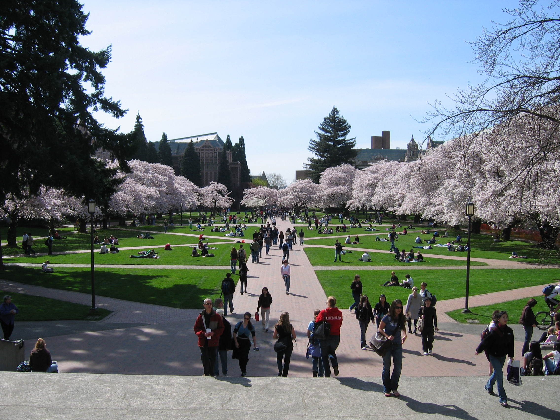 The University of Washington in Seattle has a huge athletics program, but also supports the gaming culture. UW won the NA collegiate championships in League of Legends last year.   source