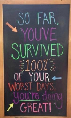 Survived100%.jpg