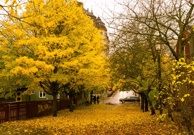 stockholm-street-style.jpg