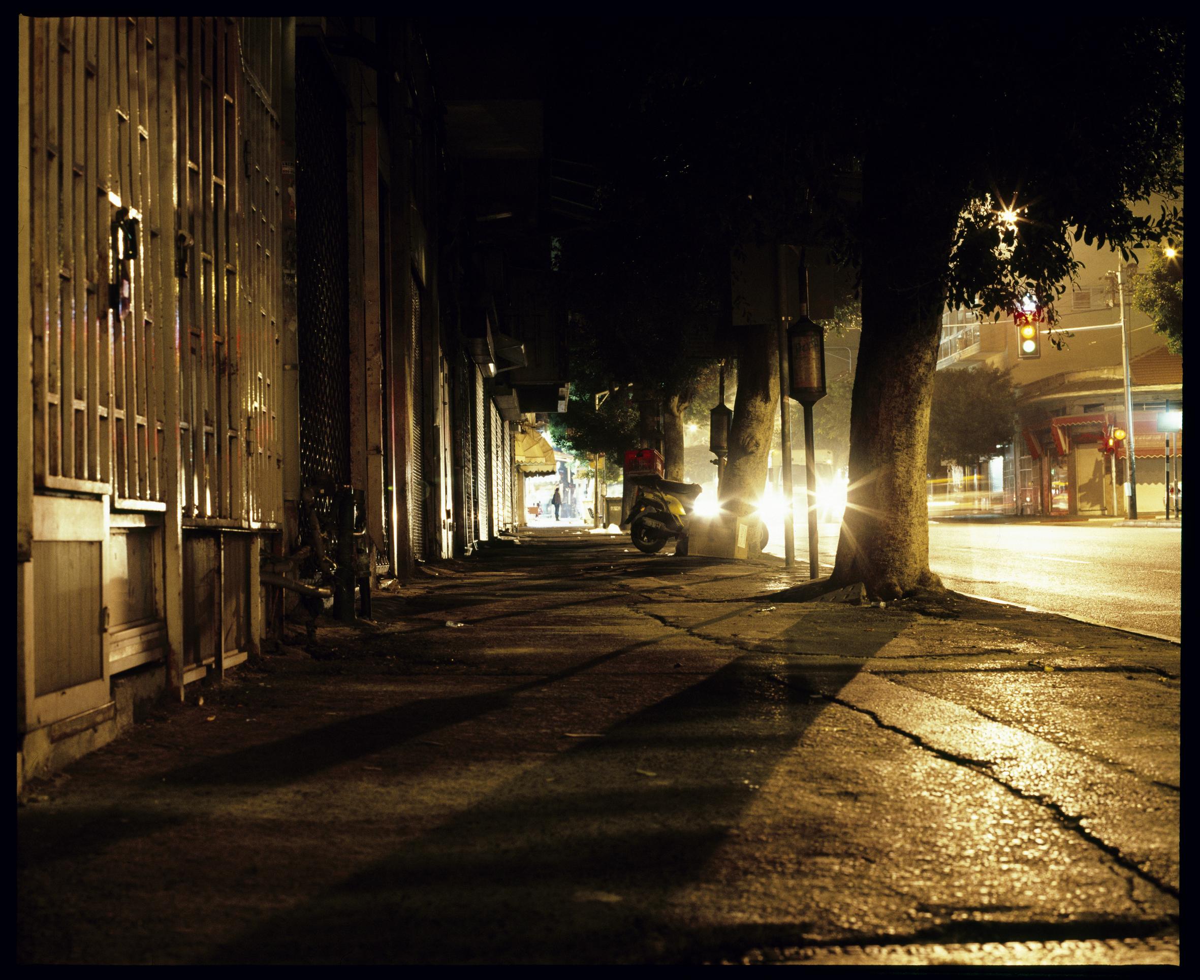 The_Ficus_Boulevard,_inkjet_print_(Analogue_photography),_90x110cm,_2009.jpg