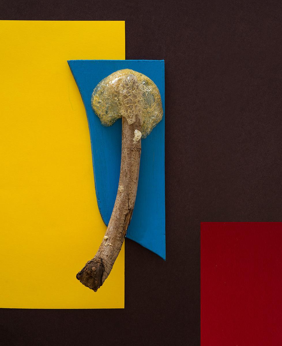 """ציקי אייזנברג, לפיד, הזרקת דיו על נייר ארכיבי, 44X54 ס""""מ, 2015"""