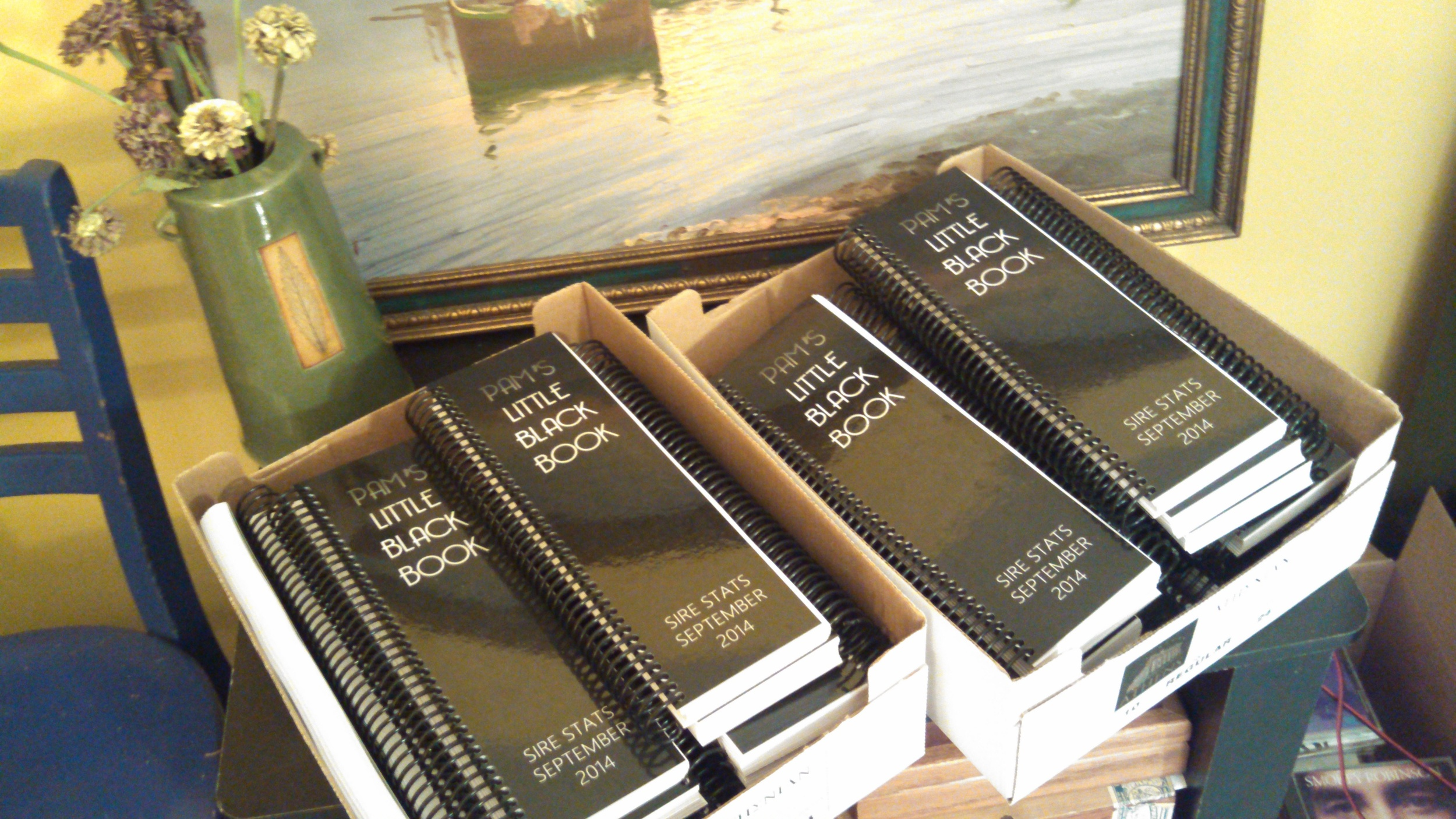PAM'S LITTLE BLACK BOOK - THIRD YEAR OF PRODUCTION