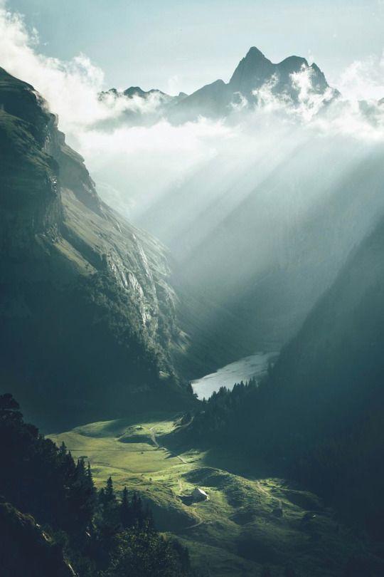 sunlight.jpg